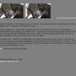 Refocus Imaging website, 2007