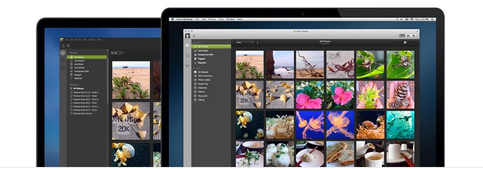 Lytro releases Lytro Desktop 3.0 Software (picture: Lytro)