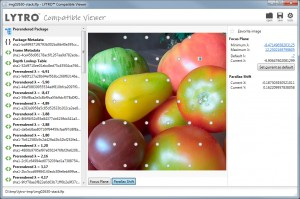 Lytro Compatible Viewer: Parallax Shift with processed image stack