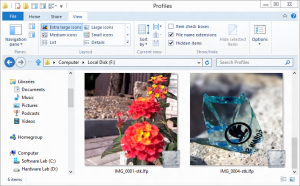 Lytro Compatible Viewer: shell integration shows thumbnail images in Windows Explorer