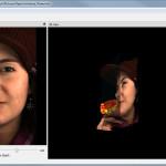 Raytrix LightfieldViewer: Focus Depth Visualizer