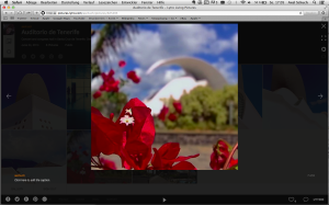 Screenshot: Lytro's new Advanced WebGL Player (picture: Axel Schuch)