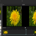 Lytro Desktop 4.3: Side-by-side 3D Animationen exportieren