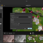 Lytro Desktop 4.3: Export für Lentikulardruck