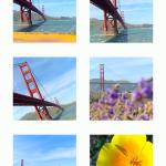 Lytro Mobile App Feed (Screenshot: Lytro)