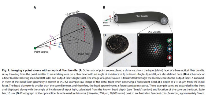 A New Class of Light Field Sensor: Researchers Unlock Optical Fiber Bundles For Light Field Endoscopy (image: Orth et al. 2019)